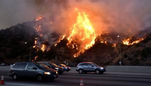 Λος Άντζελες: Μεγάλη φωτιά στις πλούσιες συνοικίες – Διασημότητες φεύγουν για να σωθούν! video