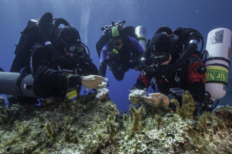 Ναυάγιο Αντικυθήρων: Πλησιάζει η πιο μεγάλη ώρα – Στόχος η ανέλκυση εντοπισμένων αρχαιοτήτων!