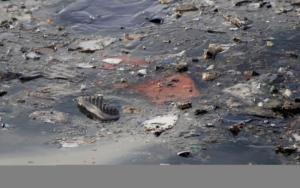 Boeing 737: Αυτά είναι τα αίτια της τραγωδίας της Lion Air