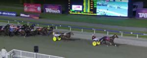 Αυστραλία: Σφαγιάζουν τα άλογα κούρσας που αποσύρονται απ' τους αγώνες! video