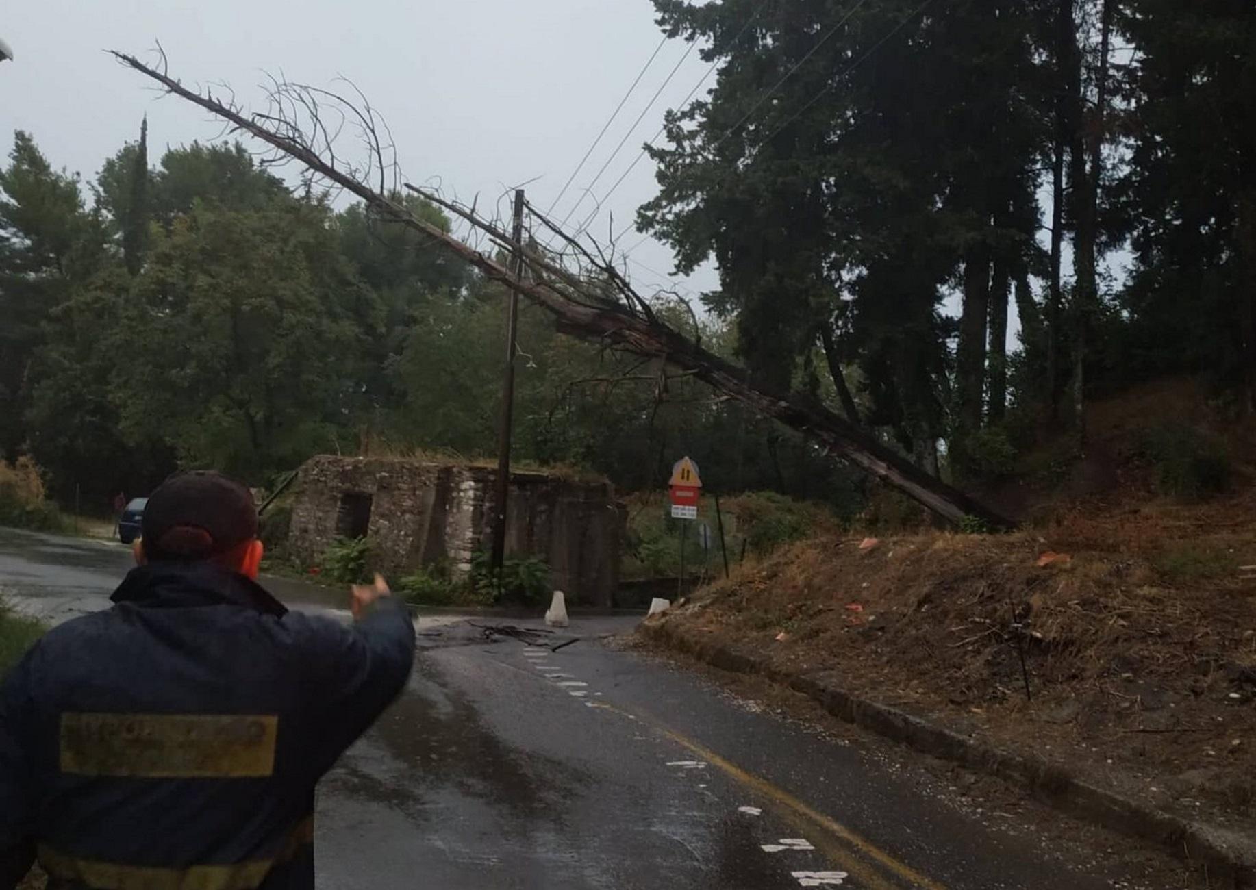 Καιρός: Πλημμύρες, πτώσεις δέντρων και δεμένα πλοία – Η Κέρκυρα αισθάνεται την κακοκαιρία [pics]