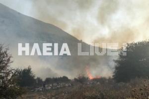 """Ηλεία: """"Δύσκολη"""" η φωτιά στις πλαγιές του Ερύμανθου"""