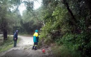 Κέρκυρα: Δραματική επιχείρηση διάσωσης σε χαράδρα – Φώναζε για βοήθεια μόνος και αβοήθητος!