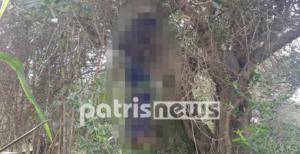 Σοκ στον Πύργο: Άνδρας βρέθηκε κρεμασμένος σε δέντρο!