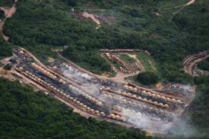 Αμαζόνιος: Άδεια από Μπολσονάρο για κόψιμο δέντρων και καλλιέργεια ζαχαροκάλαμου