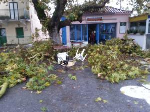 Μεσσηνία: Ανεμοστρόβιλος άφησε πίσω αυτές τις εικόνες – Οι κάτοικοι κλείστηκαν στα σπίτια τους [pics]