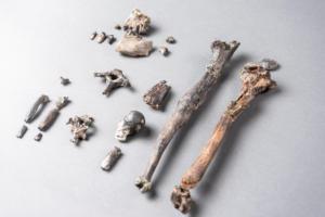 Δεν ξεκίνησε από την Αφρική εξέλιξη του ανθρώπινου είδους; Τι δείχνουν τα νέα ευρήματα