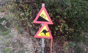 Πήλιο: Πινακίδες για καγκουρό και καμήλες – Τι συνέβη και φτάσαμε σε αυτές τις εικόνες [pics]