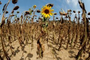 Οι φυσικές καταστροφές έπληξαν αδιάκριτα τόσο τις φτωχές όσο και τις πλούσιες χώρες!