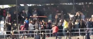 Το ξύλο της… αρκούδας σε ματς της Γ' Εθνικής! video