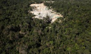 Δεν έχει τέλος η αποψίλωση στον Αμαζόνιο! Νέα στοιχεία σοκ