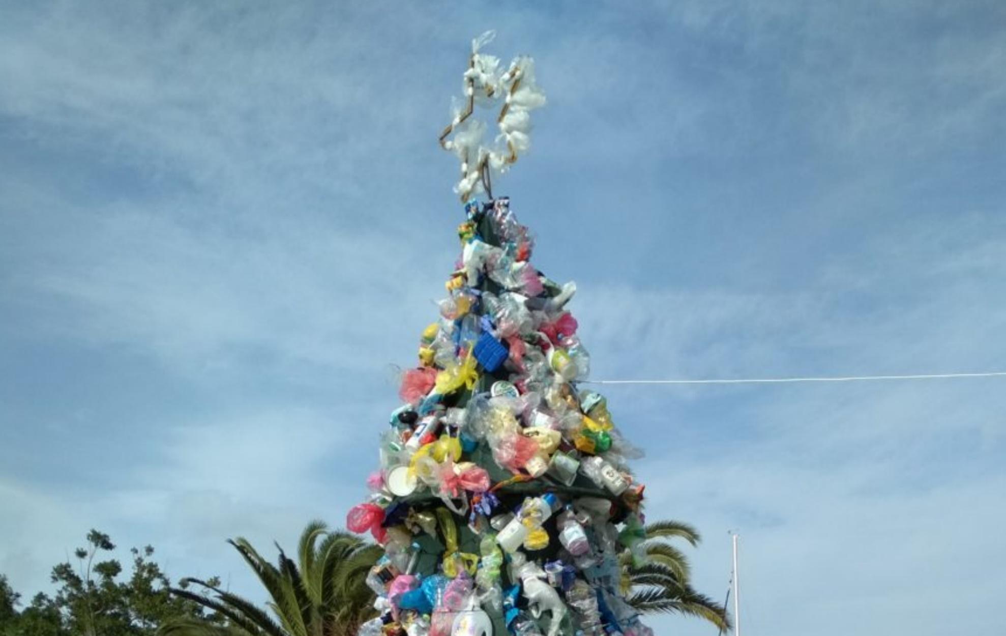 Ναύπλιο: Χριστουγεννιάτικο δέντρο διαφορετικό από τα συνηθισμένα – Μία εικόνα, χίλιες λέξεις