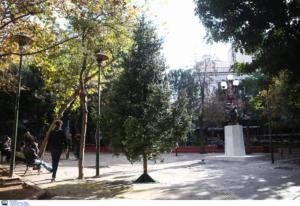 Εξάρχεια: Νέο χριστουγεννιάτικο δέντρο στην πλατεία
