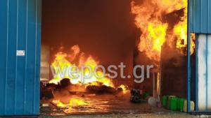 Χαλάστρα: Μεγάλη φωτιά σε συσκευαστήριο φρούτων και λαχανικών