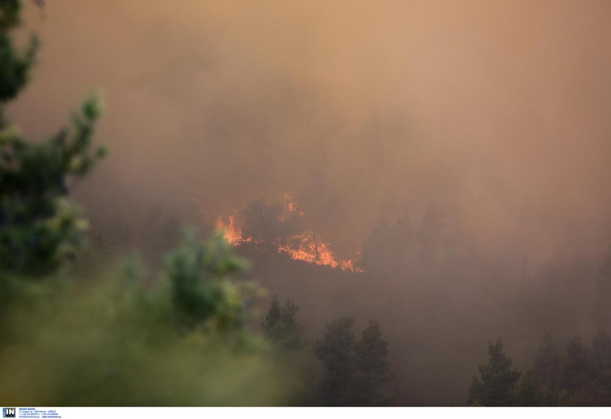 Κεφαλονιά: Σε εξέλιξη μεγάλη φωτιά στην περιοχή Πλατιές! Κινδύνευσε εξοχική κατοικία