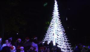 Άναψε το Χριστουγεννιάτικο δέντρο στα Γρεβενά! video