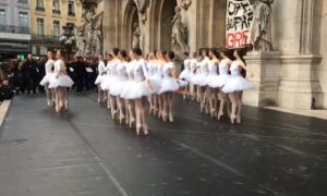 Παρίσι: Απάντησαν στις… συντάξεις του Μακρόν με λίμνη των κύκνων! video