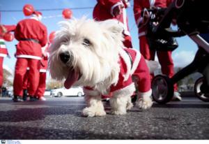 Santa Run: Κυκλοφοριακές ρυθμίσεις στην Αθήνα