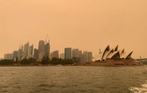 Σίδνεϊ: Προειδοποιούν οι γιατροί για την αποπνικτική ατμόσφαιρα! 20 κτίρια καταστράφηκαν [pics]