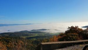Απίστευτο θέαμα! Τα Τρίκαλα χαμένα στην ομίχλη