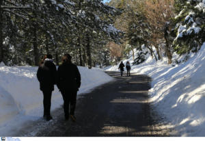 Καιρός – Ζηνοβία: Που θα χιονίσει τις επόμενες ώρες