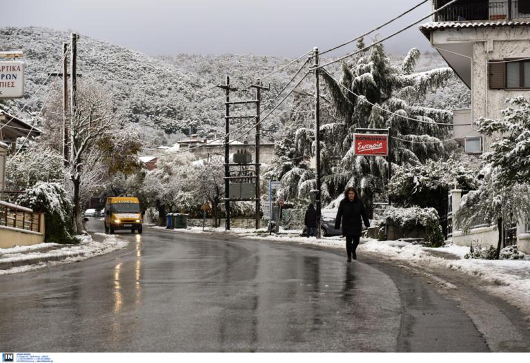 Καιρός – Διδώ: Έρχεται νέα σφοδρή κακοκαιρία με χιόνια και καταιγίδες
