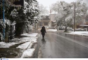 Καιρός σήμερα: Το νέο κύμα χιονιά είναι εδώ
