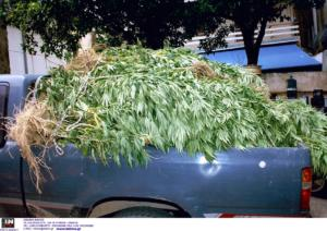 """Ρέθυμνο: Μετά τα… """"νανάκια"""" εντοπίστηκαν και οι καλλιεργητές τους"""