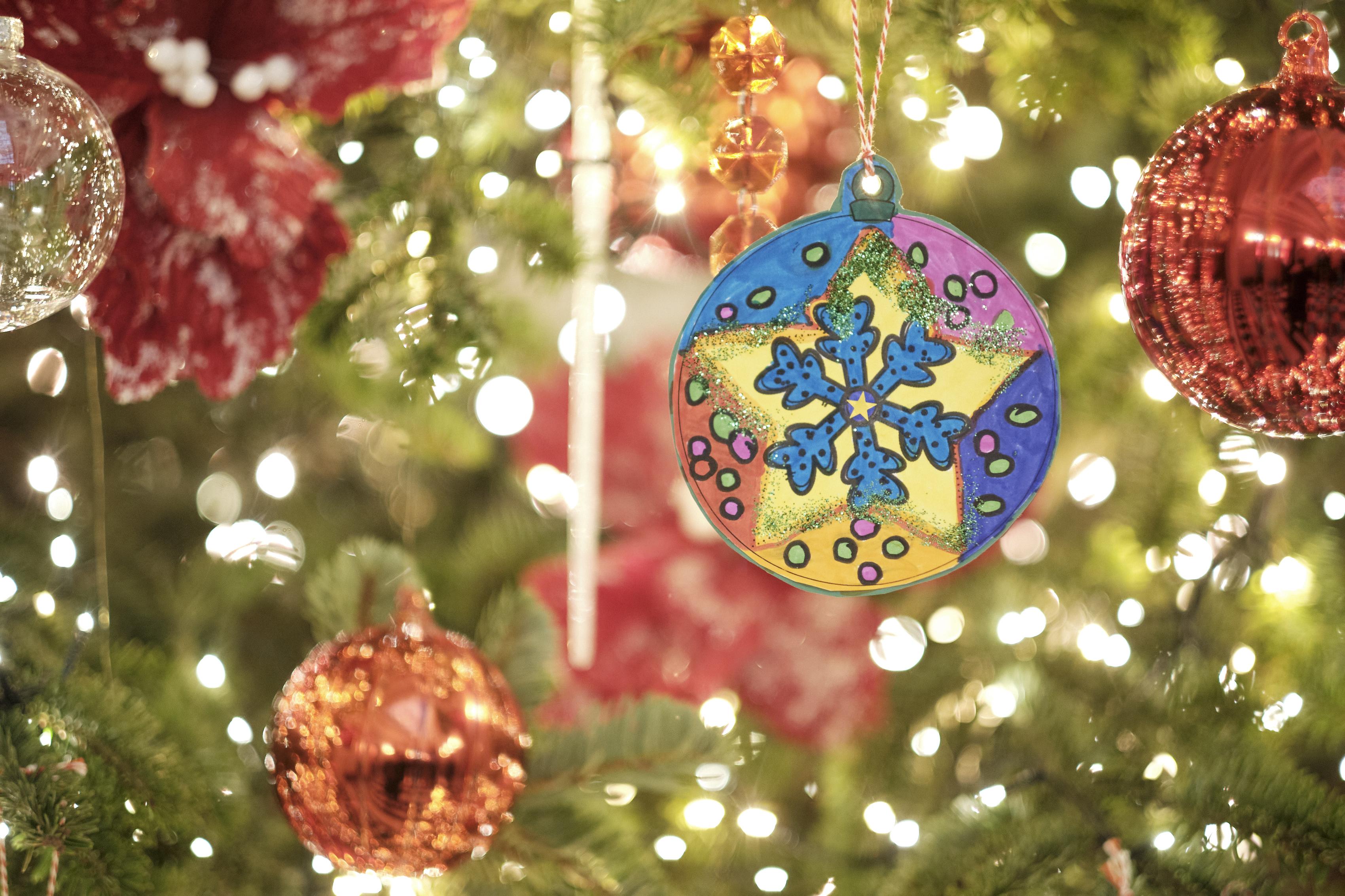 Θεσσαλονίκη: Μετά τα Θεοφάνεια αρχίζει η ανακύκλωση των φυσικών χριστουγεννιάτικων δέντρων