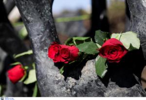 Σάμος: Πέθανε ο Κώστας Σοφούλης! Καθηγητής, συγγραφέας και πρώην βουλευτής του ΠΑΣΟΚ