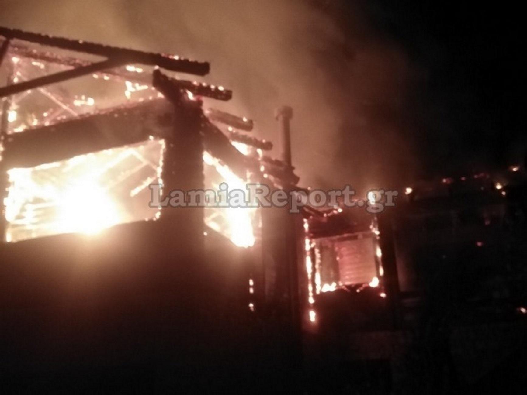 Φωκίδα: Φωτιά έκανε στάχτη το διώροφο σαλέ! Μάχη για να μην επεκταθούν οι φλόγες [pic]