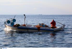 """Δωδεκάνησα: Τα """"θαλάσσια αγγούρια"""" που ψάχνουν όλο και περισσότεροι ψαράδες! Η μεγάλη διατροφική τους αξία"""