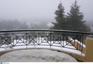 Εύβοια: Ξεχασμένοι χωρίς ρεύμα στα χιόνια 28 άνθρωποι! Έκκληση για βοήθεια στο χωριό Σέττα [video]
