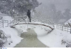 Καιρός αύριο: Χιόνια, παγετός και πολικές θερμοκρασίες