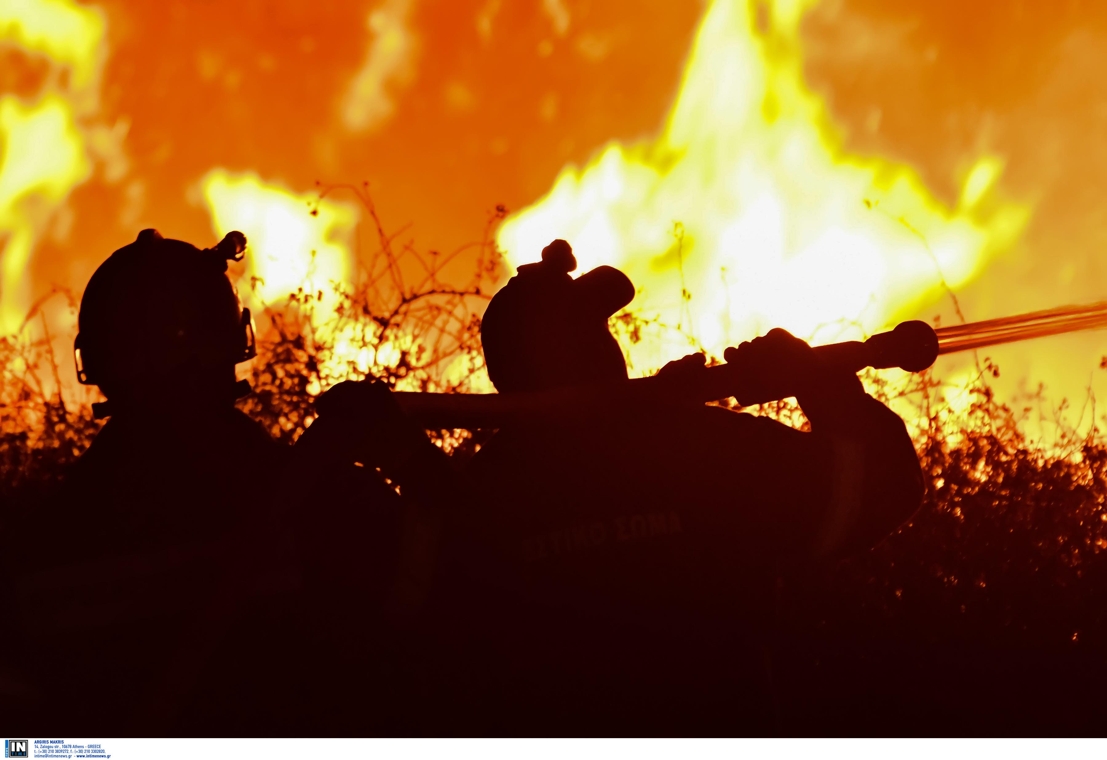 Αργολίδα: Τραυματισμός πυροσβέστη στη μεγάλη φωτιά! Απειλήθηκαν σπίτια στους Μύλους [pics, video]