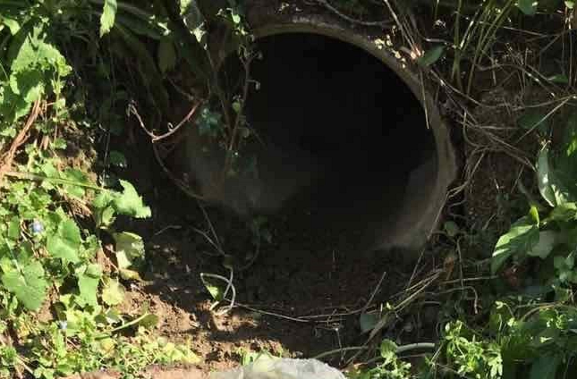 Άρτα: Ο αγωγός του νερού έκρυβε εκπλήξεις! Πλησίασαν και είδαν μπροστά τους αυτές τις εικόνες (Φωτό και Βίντεο)