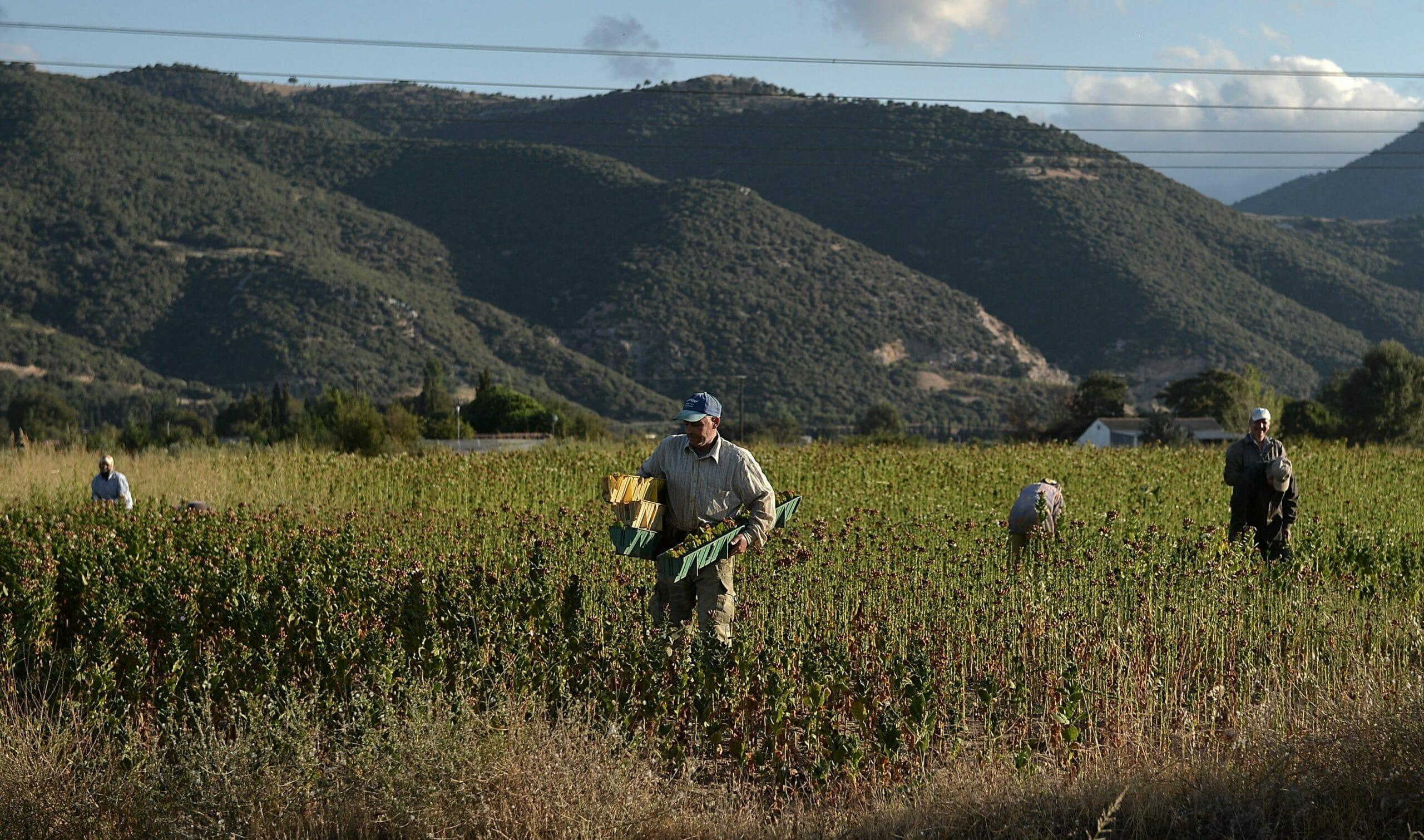 Φλώρινα: Ανοίγει ο σταθμός της Κρυσταλλοπηγής για τους αλλοδαπούς εργάτες γης