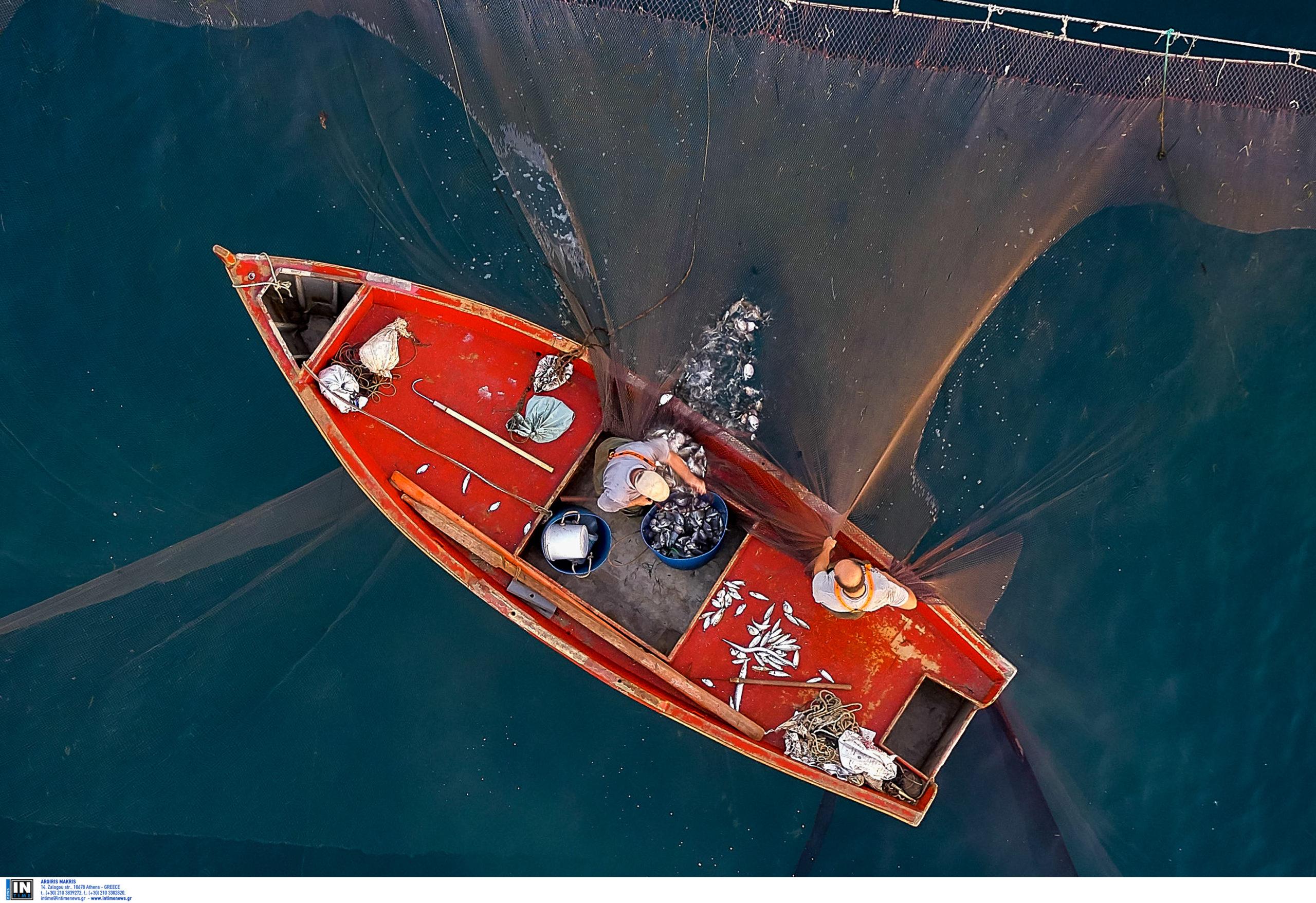 Ηλεία: Σήκωσε τα δίχτυα και είδε μέσα αυτή την παράξενη εικόνα! Έκπληκτος ο ψαράς (Φωτό)