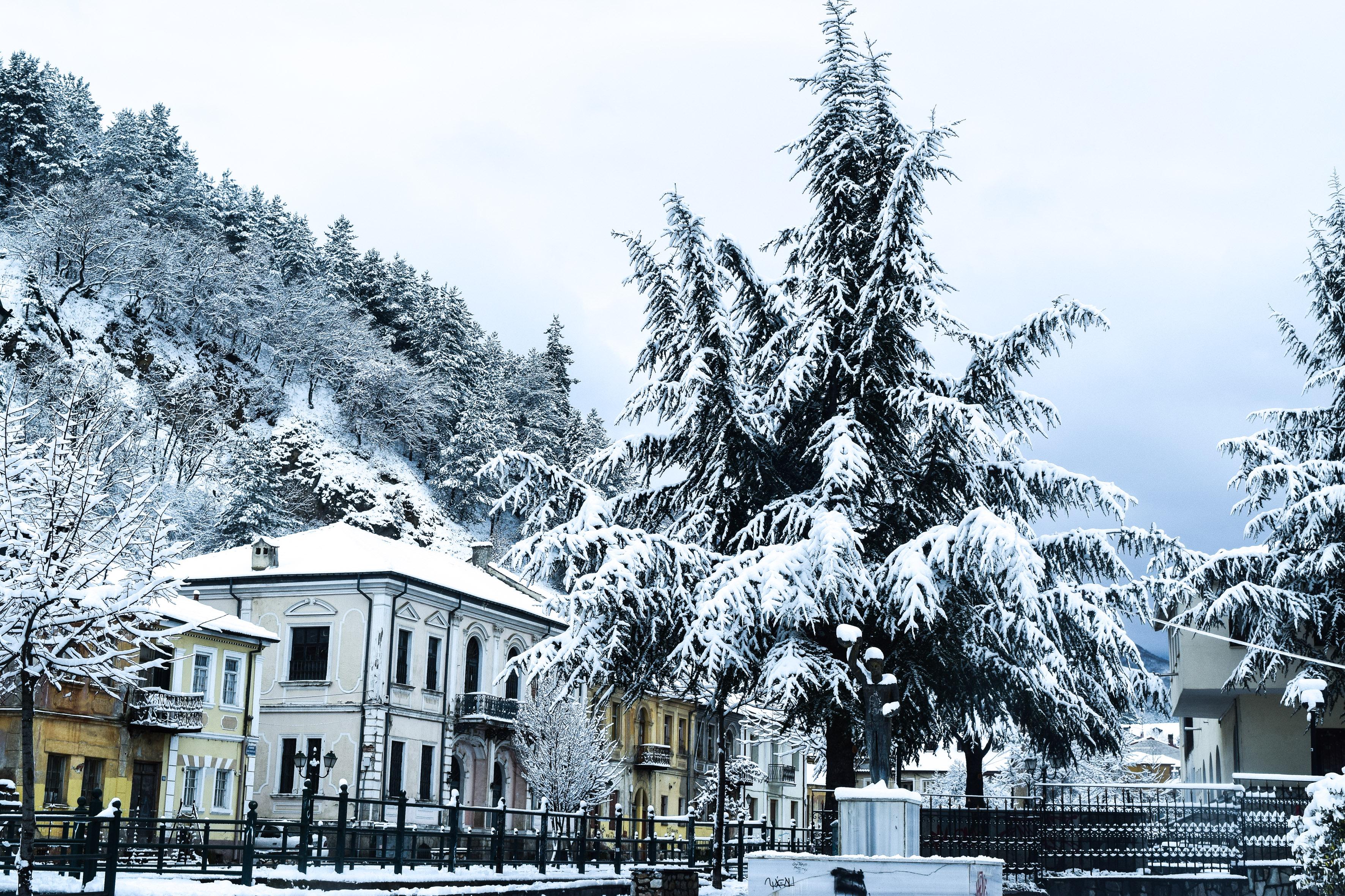 Καιρός: Χιόνια και κλειστά σχολεία! Πτώση της θερμοκρασίας έως και 15 βαθμούς Κελσίου [video]