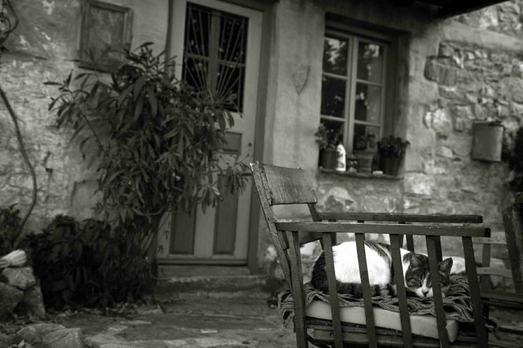 Βόλος: Επέστρεφε σπίτι και είδε να κάθονται στο μπαλκόνι του 3 άγνωστες γυναίκες! Τι είχε συμβεί…