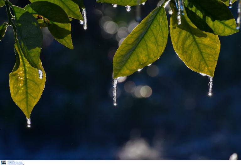 Καιρός σήμερα: Χειμωνιάτικη λιακάδα – Σε ποιες περιοχές θα χιονίζει και θα βρέχει