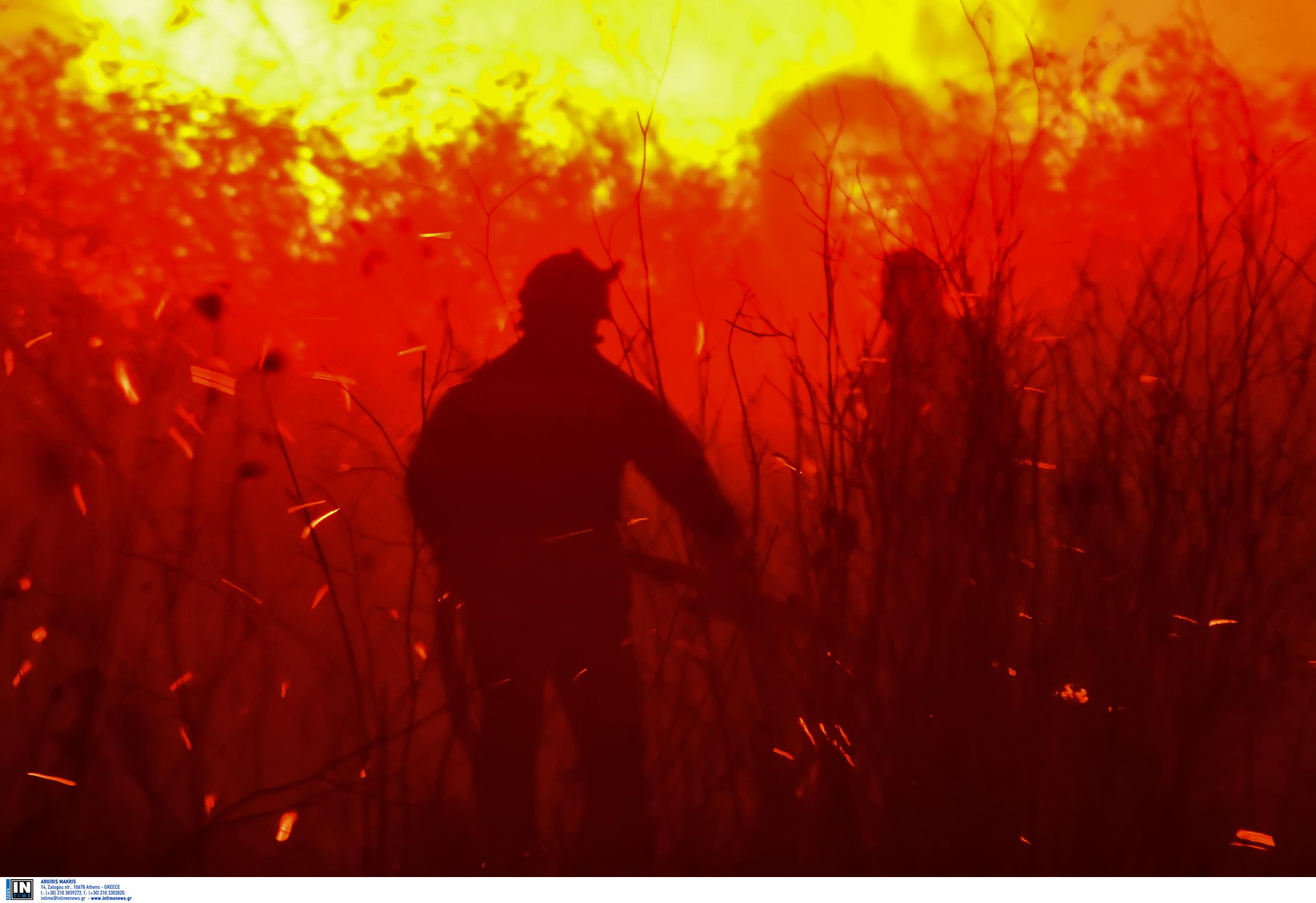 Μεγάλη φωτιά στην Αργολίδα! Δύσκολη νύχτα στους Μύλους για κατοίκους και πυροσβέστες