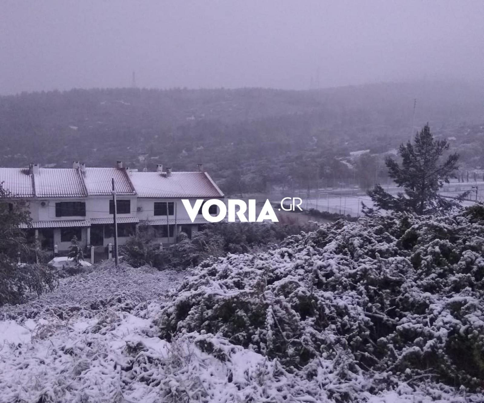 «Άσπρη» μέρα στη Θεσσαλονίκη, κλειστοί δρόμοι και χιόνι 30 εκατοστών στον Χορτιάτη (pics, video)
