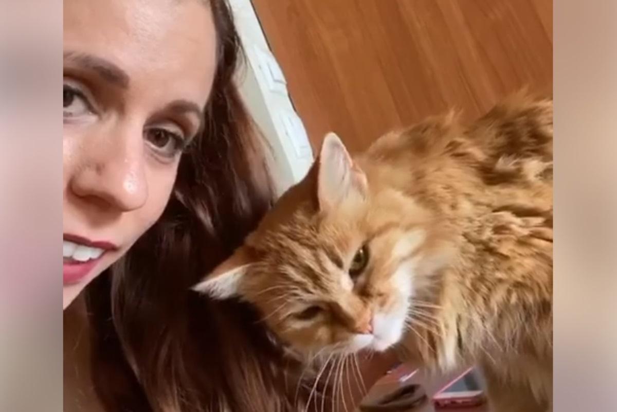 Η Κατερίνα Στεφανίδη άνοιξε… κουβέντα με τη γάτα της! «Σε κούρασε η καραντίνα;» (video)