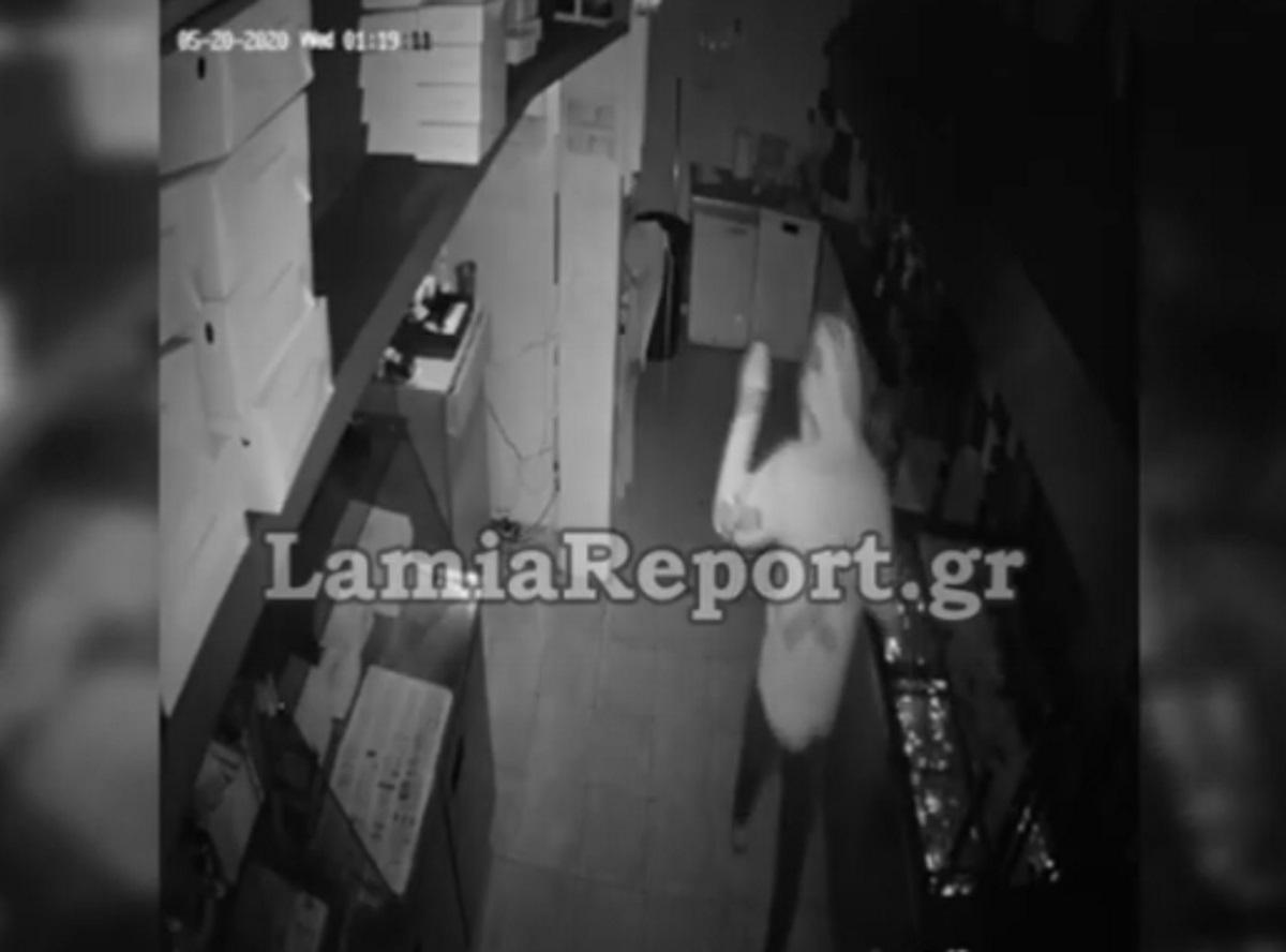 """Διάρρηξη στην κάμερα! Τσιγγάνος """"ποντικός"""" τρυπώνει σε μαγαζί στη Λαμία (video)"""