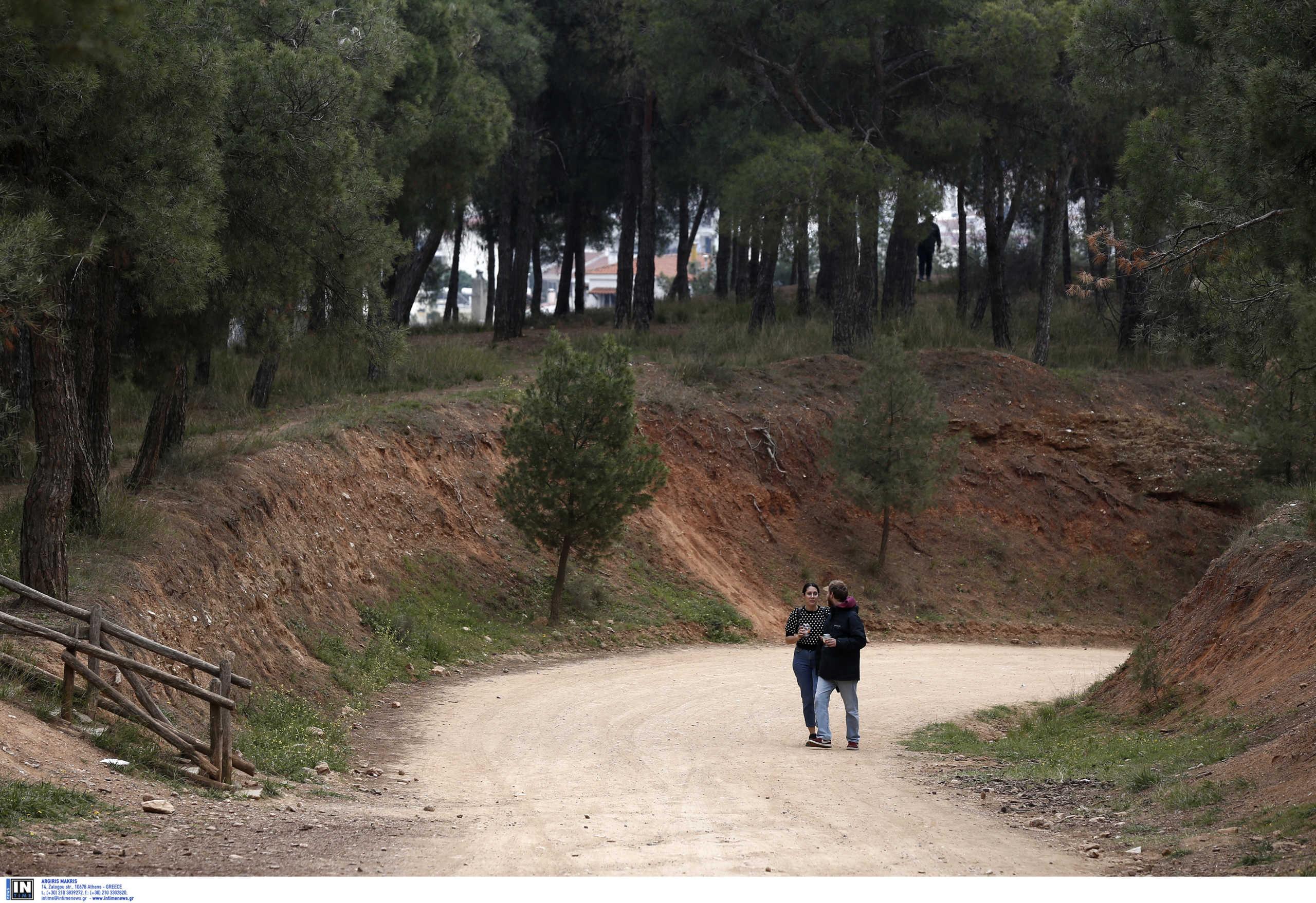 Θεσσαλονίκη: Ανοικτό από το πρωί το δάσος του Σέιχ Σου και του Χορτιάτη