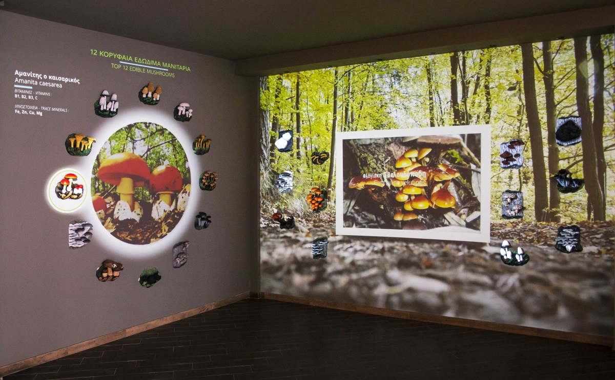 Μουσείο Μανιταριών Μετεώρων: Νέα πτέρυγα-κόσμημα με πρωτοποριακή τεχνολογία