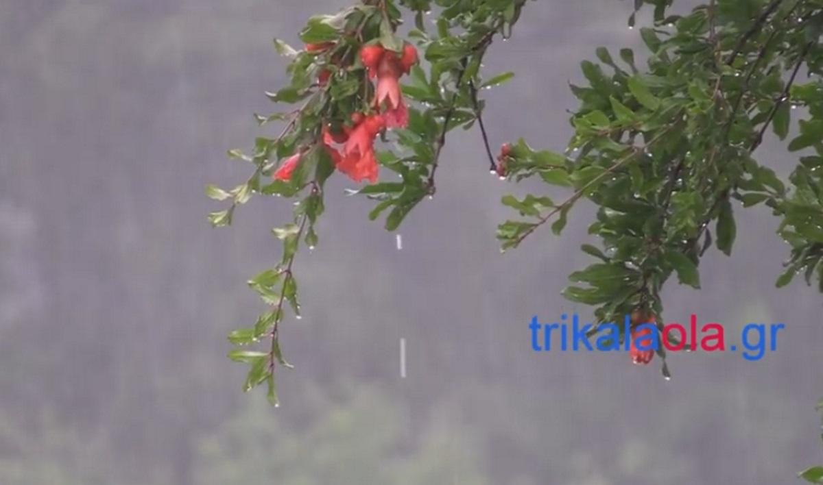 Δυνατή καταιγίδα στα Τρίκαλα (video)
