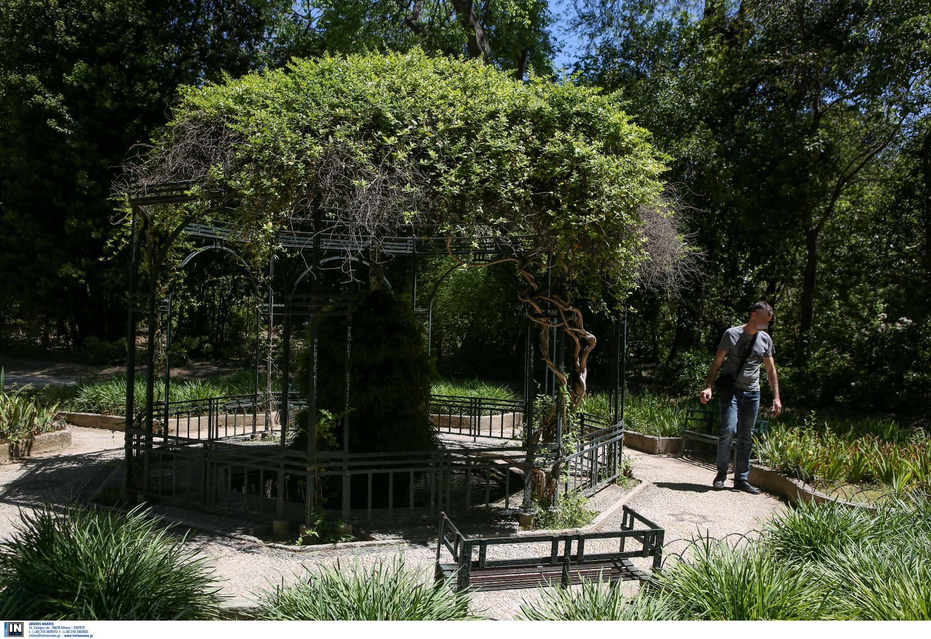 """Εθνικός Κήπος: H """"κρυφή"""" όαση πρασίνου στο κέντρο της Αθήνας"""