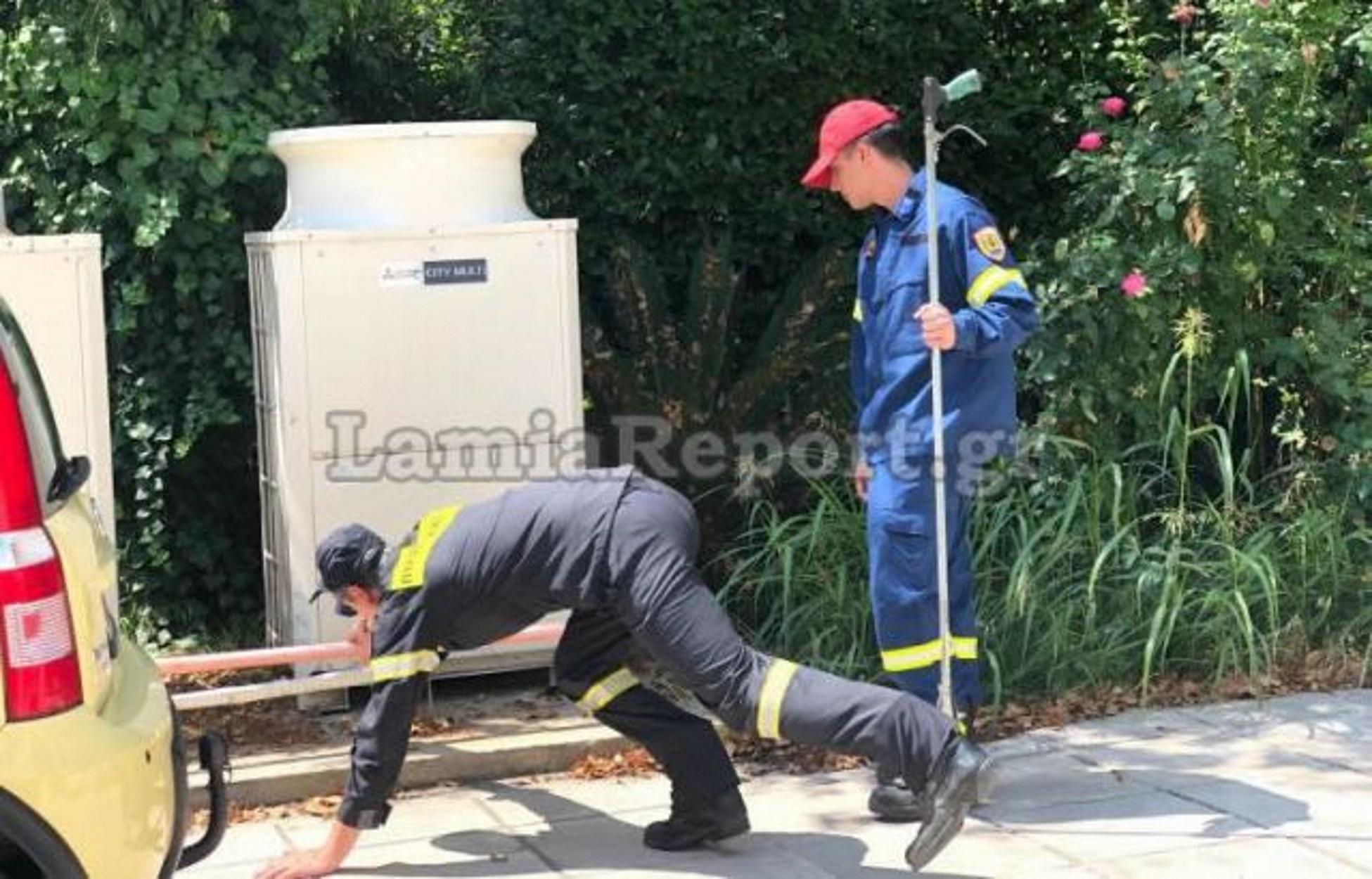 Λαμία: Επιχείρηση της πυροσβεστικής για φίδι σε πολυκατοικία (pics)